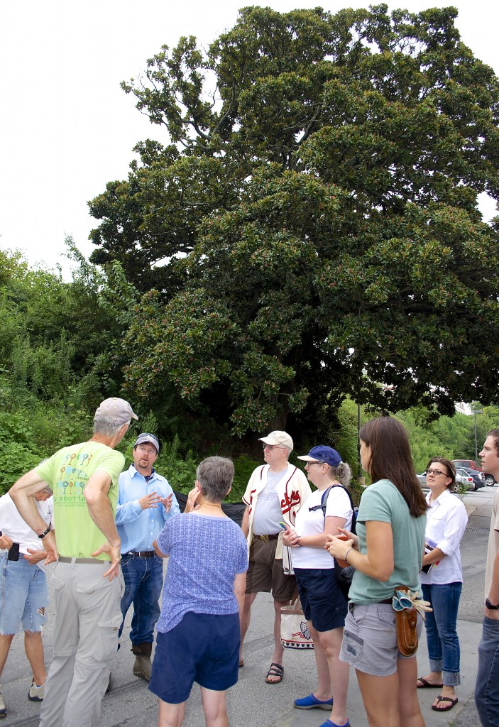Kevin Redeker from Bold Spring Nursery explains what will happen to the cuttings to Trees Atlanta staff and volunteers.