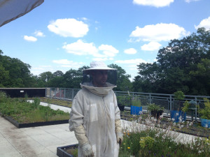 Fifth generation beekeeper Jon Caylor dons his protective suit to work with the SPARK bees.