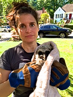 "Deborah and the ""rogue baby raptor"""