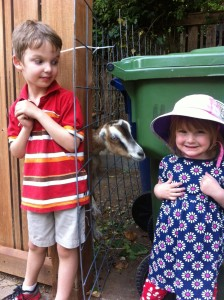 Cate's not sure she's ready for a goat kiss. Brother Joshua looks on.